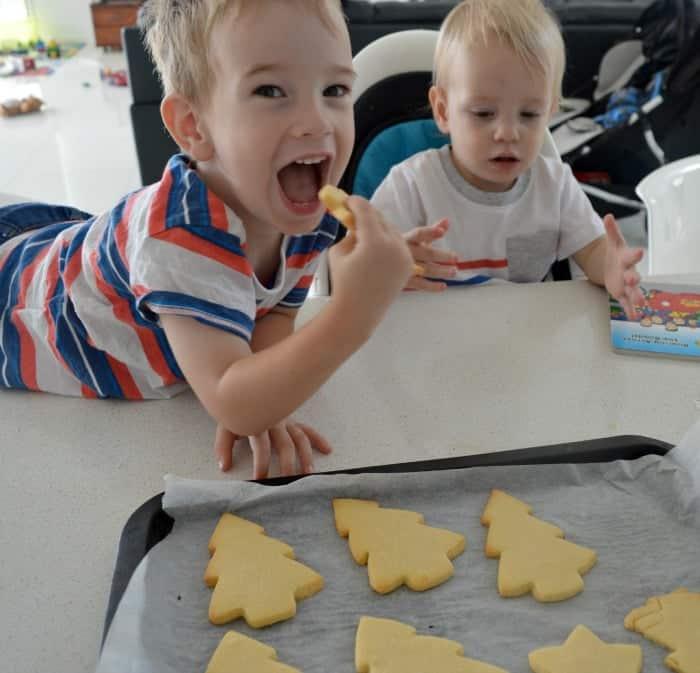 Vanilla Cookies 6