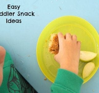 Easy Toddler Snack Ideas