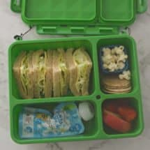 Go Green Lunch Box Review