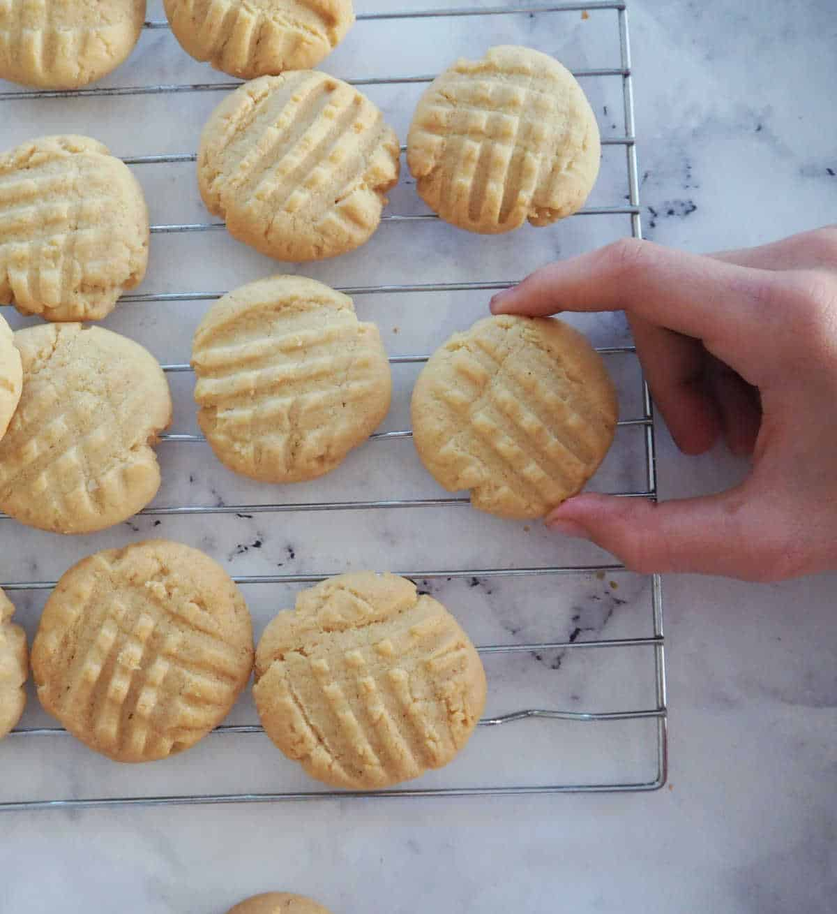 Child picking a peanut butter biscuit off a cooling rack.